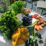 Powernahrung – das Ernährungs-Management für Energie & Fitness